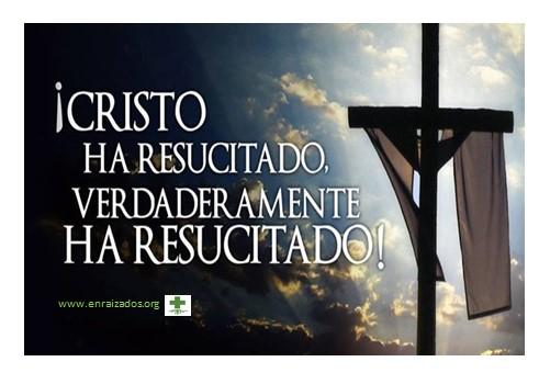 Feliz Pascua De Resurrección Enraizadosorg